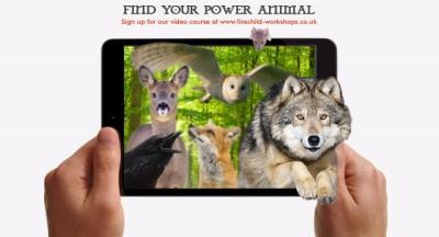 PowerAnimalCourseiPad
